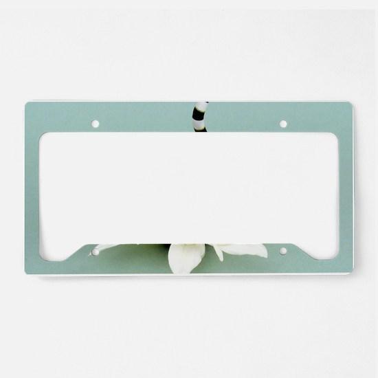 Daisy Lemur License Plate Holder
