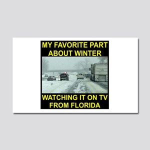 Watching It On TV In FLA Car Magnet 20 x 12