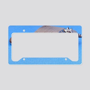 Safecracker License Plate Holder