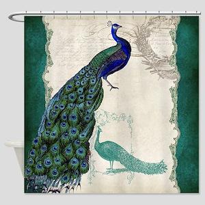 Vintage Peacock Etchings Scroll Swirl Watercolor S