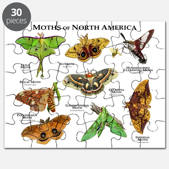 Moths of North America Puzzle