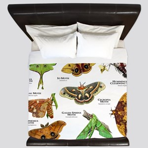Moths of North America King Duvet