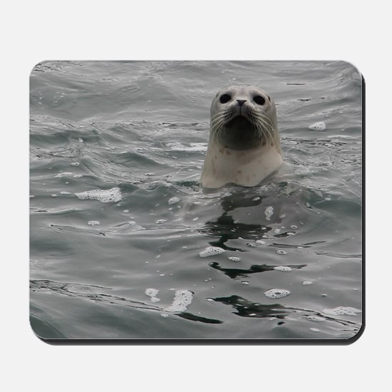 Harbor Seal Mousepad
