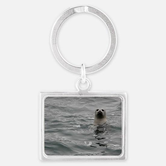 Harbor Seal Landscape Keychain