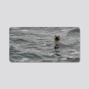 Harbor Seal Aluminum License Plate