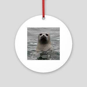 Harbor Seal Round Ornament