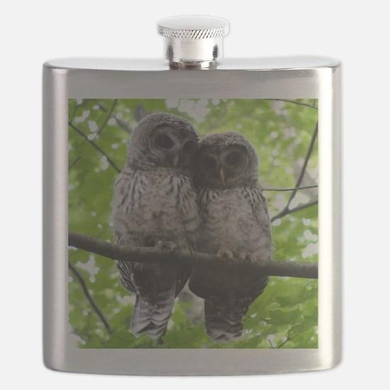 Cuddling Owls Flask