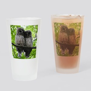 Cuddling Owls Drinking Glass