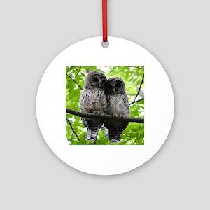 Cuddling Owls Round Ornament