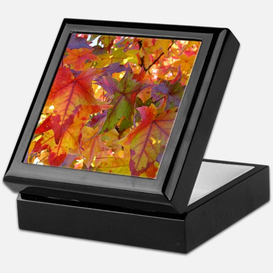 Autumn Leaves 97M Red Colorful Fall T Keepsake Box