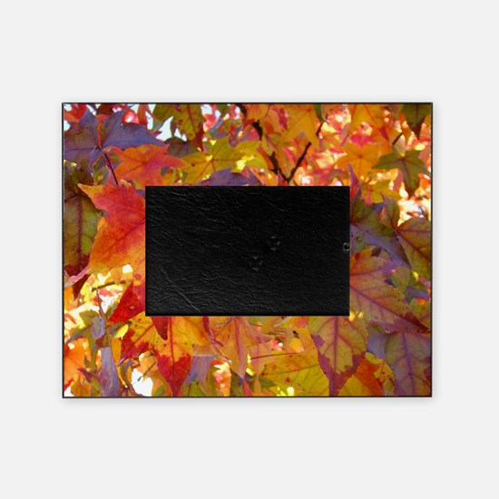 Autumn Leaves 97M Red Colorful Fall  Picture Frame