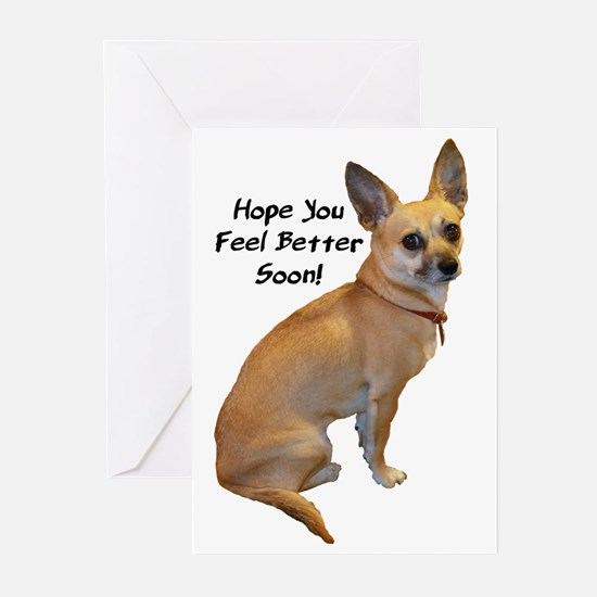 Chihuahua Get Well Soon Greeting Cards