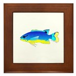 Southseas Damselfish Framed Tile