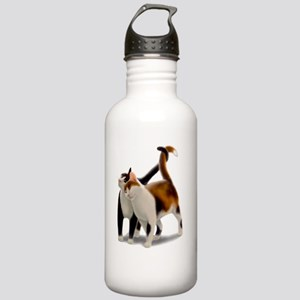 Kitty Cat Friends Stainless Water Bottle 1.0L