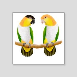 """Caique Parrot Love Square Sticker 3"""" x 3"""""""