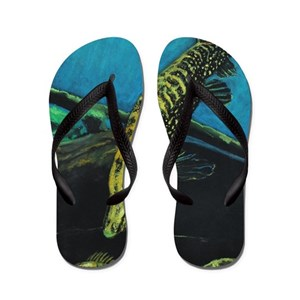 dad5e0974ea997 Perch Flip Flops - CafePress