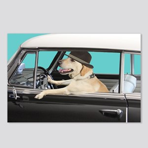 Yellow Labrador Driving C Postcards (Package of 8)