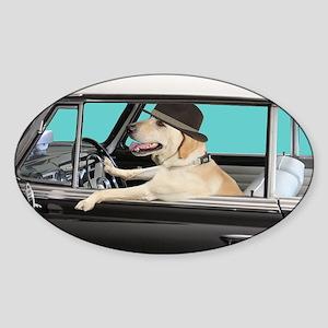 Yellow Labrador Driving Classic Car Sticker (Oval)