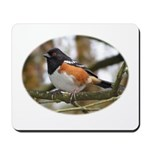 Spotted Towhee Mousepad