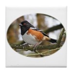 Spotted Towhee Tile Coaster