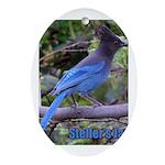 Steller's Jay Oval Ornament
