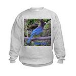 Steller's Jay Kids Sweatshirt