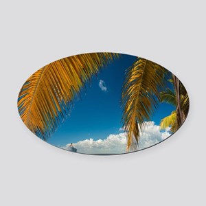 Palm trees cruise Catalina Island  Oval Car Magnet