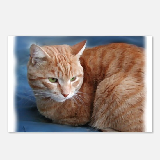 Cute Tabby cats Postcards (Package of 8)