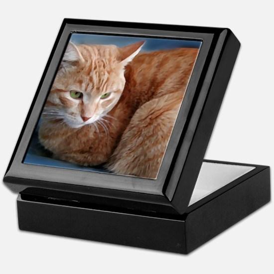 Funny Cats curled up Keepsake Box
