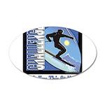 skatboard donttrythisathomesking copy.png 20x12 Ov