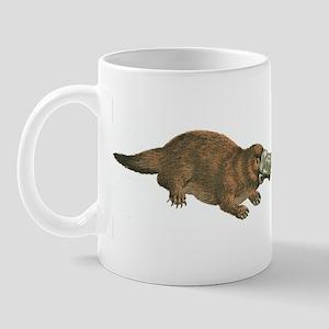 Get a cab and go home, Evolution. You'r Mug
