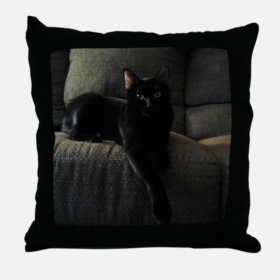 Beautiful Benny Throw Pillow