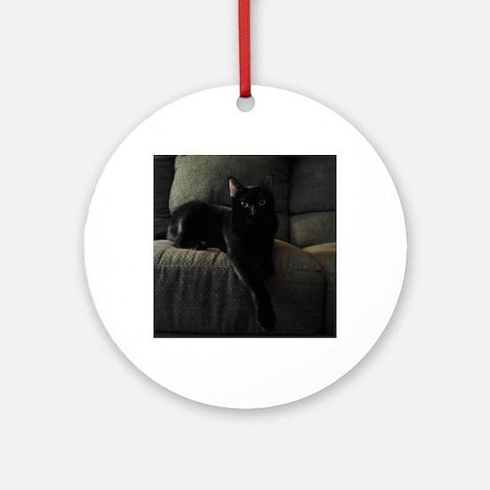 Beautiful Benny Round Ornament