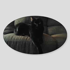 Beautiful Benny Sticker (Oval)