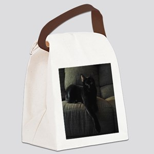 Beautiful Benny Canvas Lunch Bag