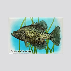 Black Crappie Rectangle Magnet