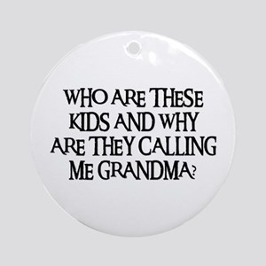 WHO ARE THESE KIDS Ornament (Round)