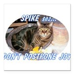 spike2BIGa Square Car Magnet 3