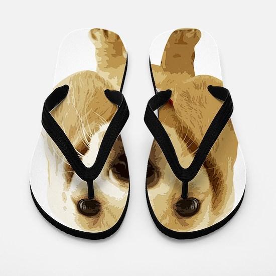 DAchshund004 Flip Flops