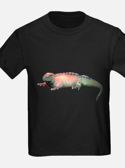rhinoceros iguana T