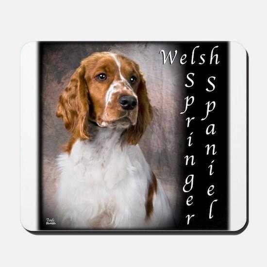Welsh Springer Spaniel Mousepad