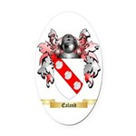 Ealand Oval Car Magnet
