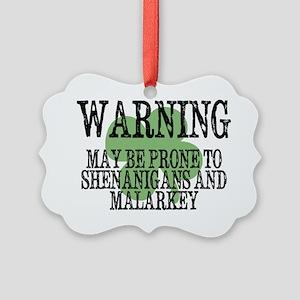 Shenanigans  Malarkey Picture Ornament