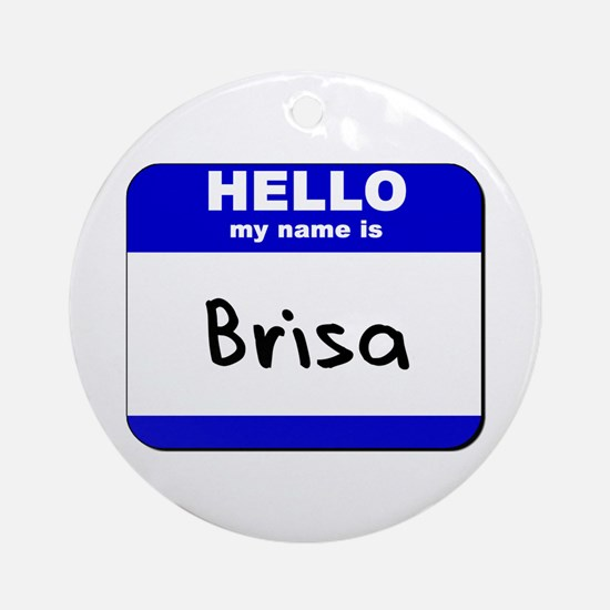 hello my name is brisa  Ornament (Round)