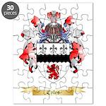Eyles Puzzle