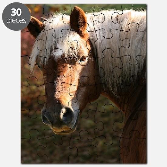 Haflinger Horse Puzzle