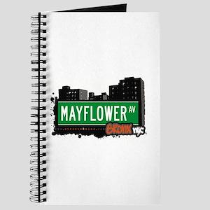 Mayflower Av, Bronx, NYC Journal