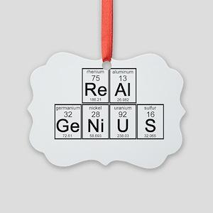 Real Genius Picture Ornament
