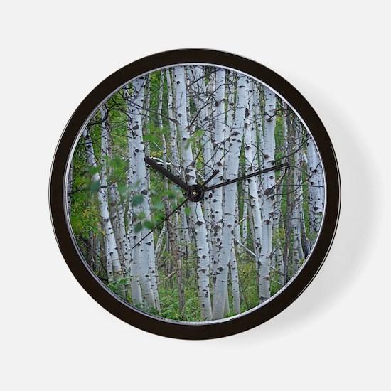 Thick Aspen grove Wall Clock