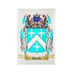 Eveille Rectangle Magnet (100 pack)